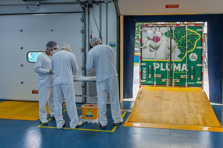 Butantan inicia a produção da ButanVac; veja o passo a passo de fabricação da vacina
