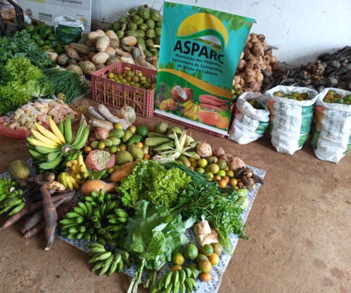 Agricultores e agricultoras familiares de Tancredo Neves comercializam alimentos para programa institucional